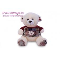 Медведь в одежде